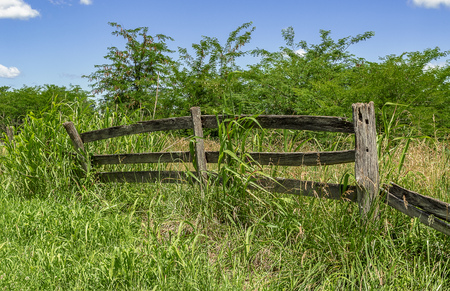 Decaying Rural Fence Imagens
