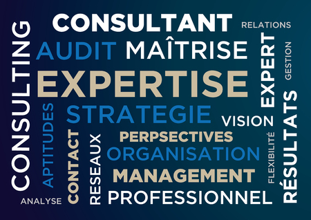 flexible business: Expertise - advice - consultant - tag - cloud - words - illustration - audit