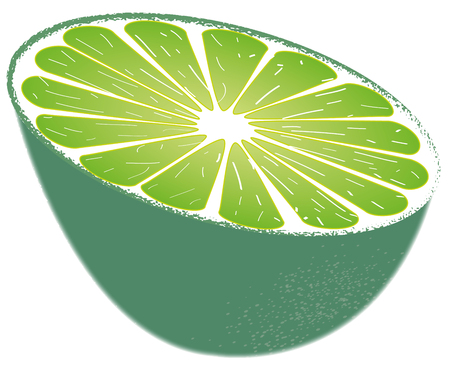 appointed: half a lime Illustration