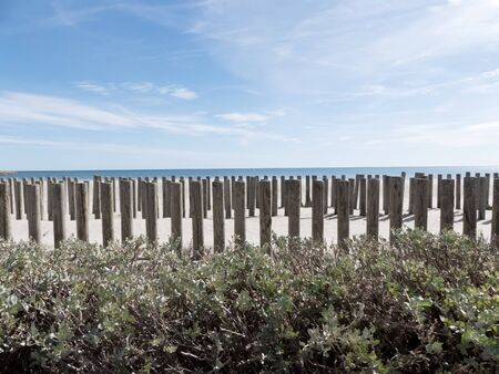 Beach with a wooden fence in front