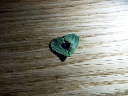 Heart shaped leaf on wood background Reklamní fotografie - 145364059