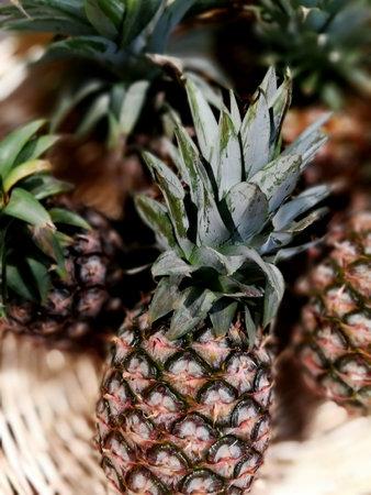 Pineapple on a basket Reklamní fotografie