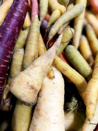 Carrot of several colors in bulk