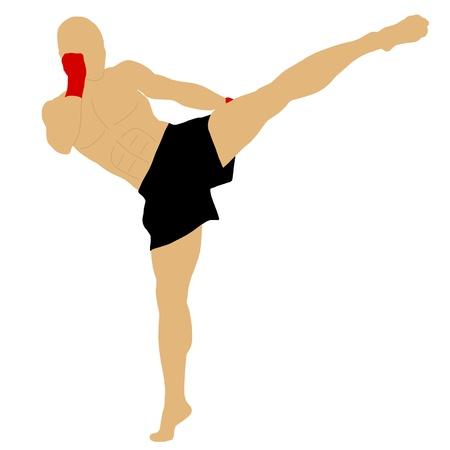 fighter doing a high kick