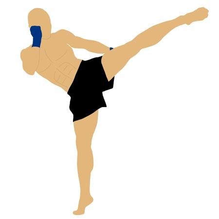 high: fighter doing a high kick