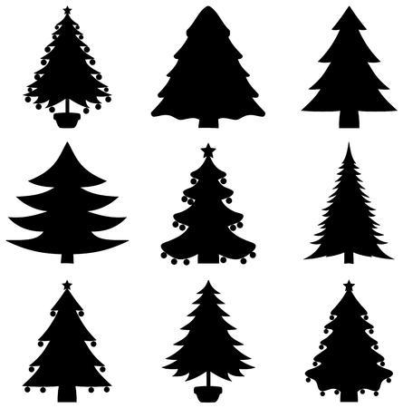 a series of decorative fir shadow