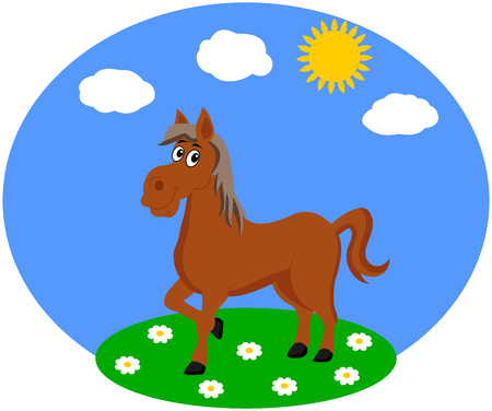 one horse in a meadow Vector