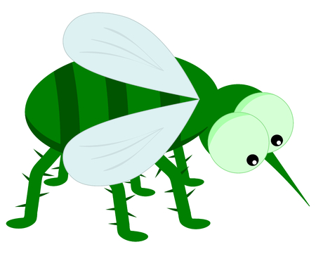 house fly: green insect Illustration