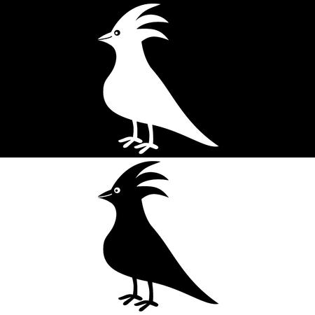 fledgeling: a birds shadow