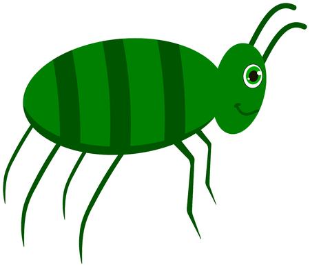 locust: a green cockroach