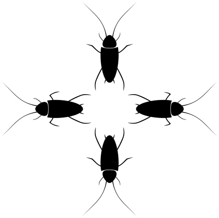 cockroaches with different tentacles