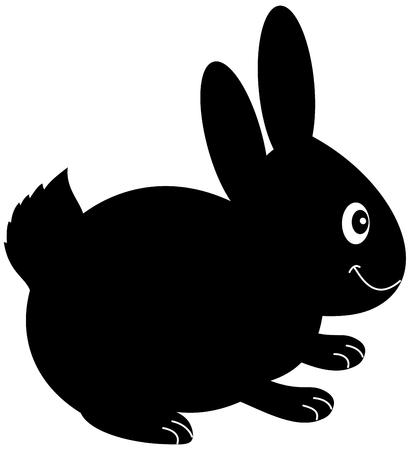 pet breeding: a plush rabbit in shadow