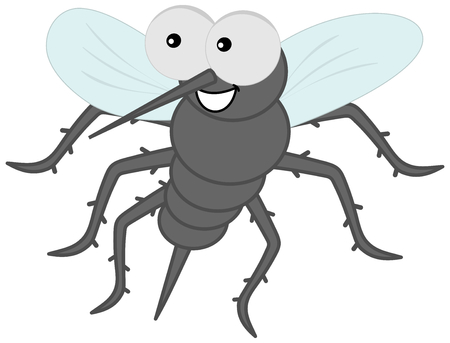 housefly: sting mosquito with hair