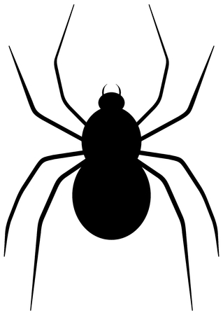 spidery: a spider back