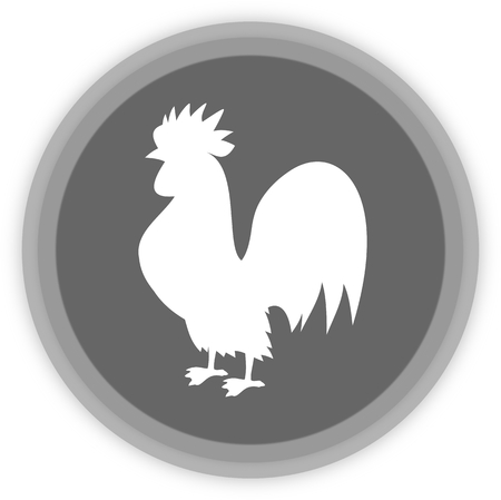 aviculture: a rooster in a grey Panel Illustration