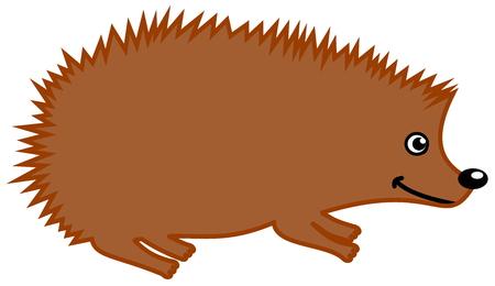 goad: a hedgehog zoo in profile Illustration