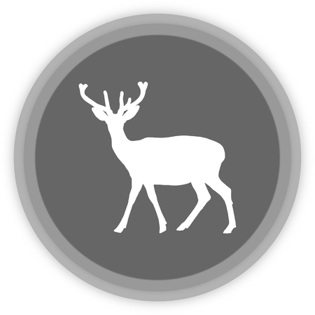 ruminant: a deer in a grey Panel