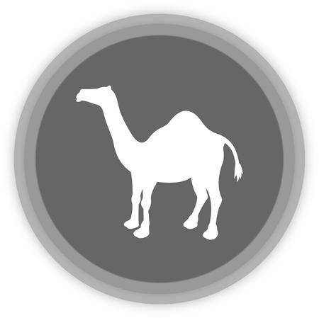 a camel in a grey Panel Vector