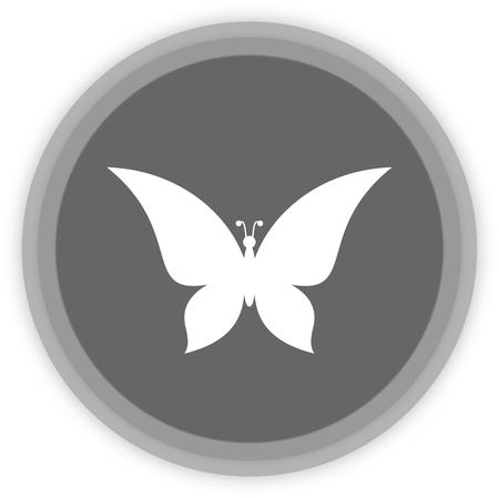 feeler: a butterfly in a grey Panel