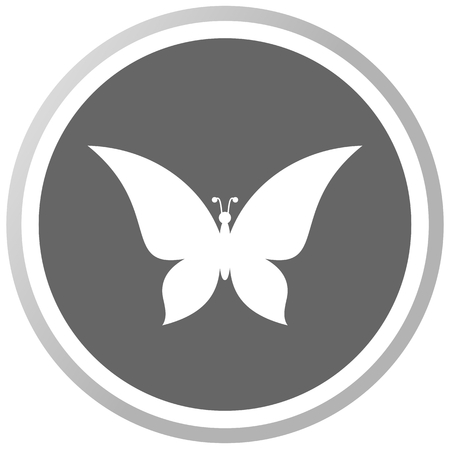 a butterfly in a grey Panel Vector