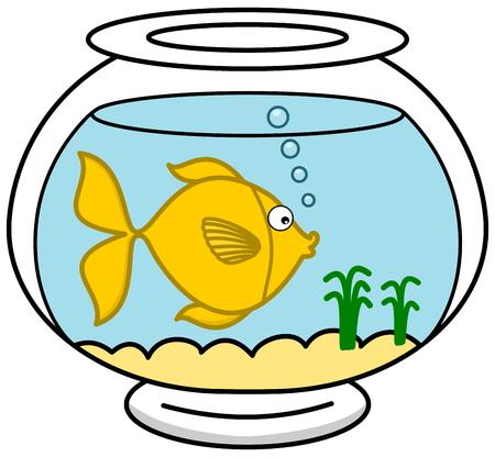 carpus: a fish in its aquarium