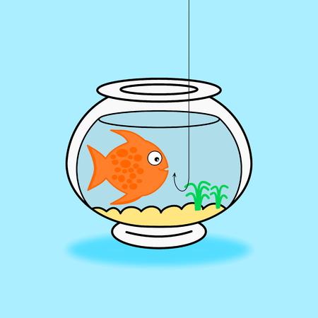carpus: a fish in its aquarium on blue background Illustration
