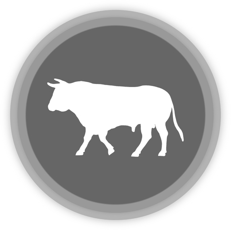 a bull in a grey Panel Vector