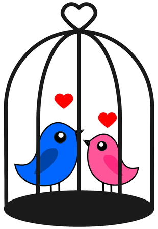 fledgeling: a couple of bird that love caged