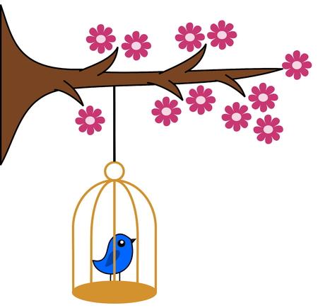 fledgeling: bird in cage