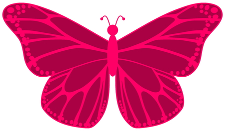 smirch: pink butterfly