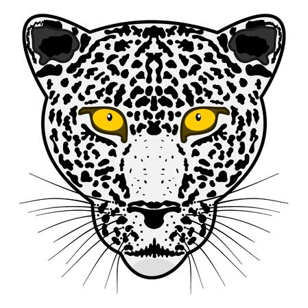 tawny: head leopard