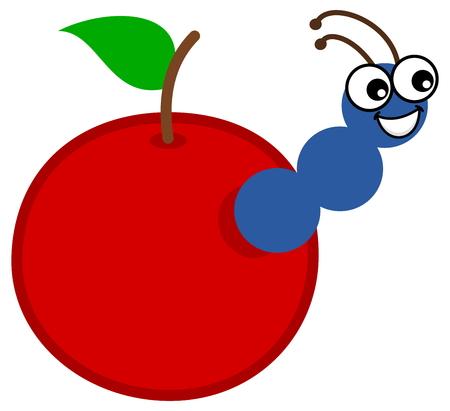 maggot: a maggot emerging from an apple or cherry