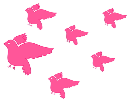 paloma volando: varios de vuelo paloma