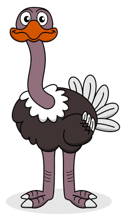looking ahead: an ostrich looking ahead