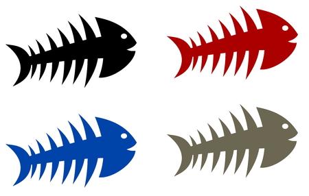 skeleton of fish: esqueleto multicolor pescados Vectores