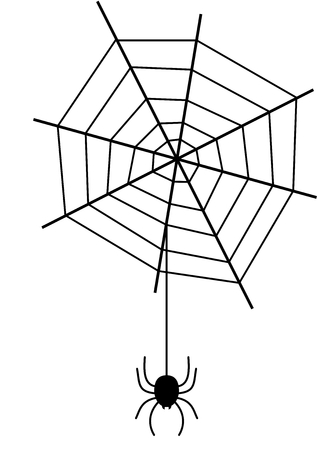 arachnophobia: a spider with its web Illustration