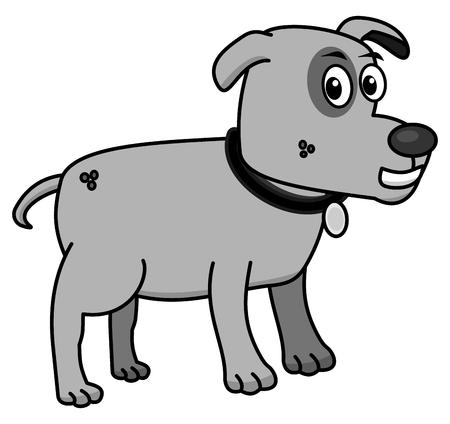domesticated: small dog profile