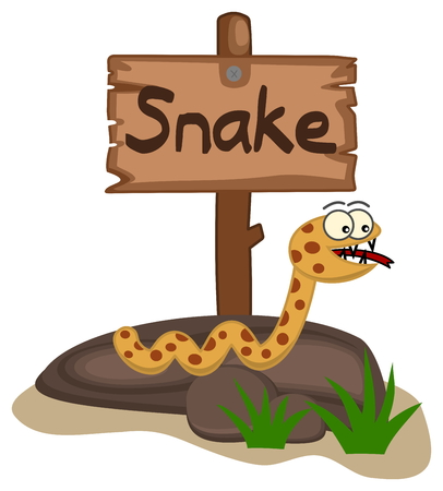 snake cartoon: snake on a rock with panel Illustration