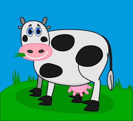 ruminate: cow eating grass in a field