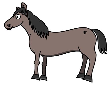 pet breeding: a beautiful grey horse