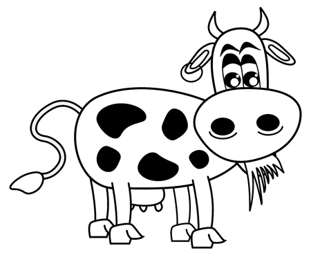ruminate: cow eating grass for coloring