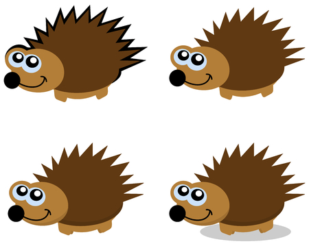 omnivores: Several series of hedgehogs