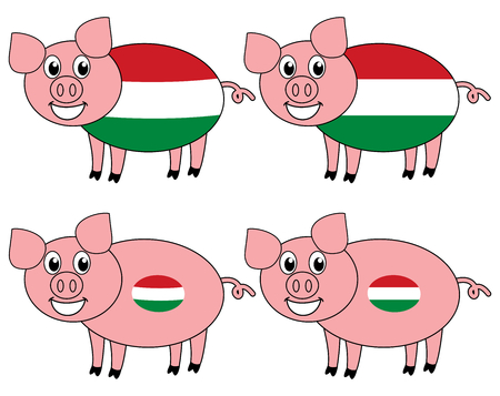 a smiling and happy pig raised in Hungary Foto de archivo - 120334495