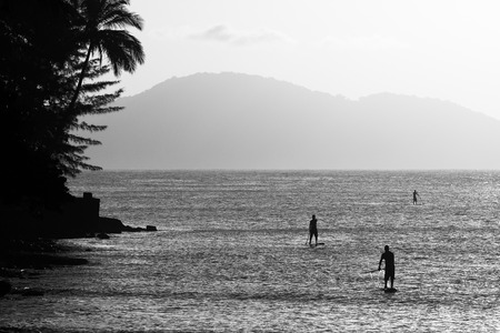 Three young men stand up paddling in Guaruja, Brazil Stok Fotoğraf