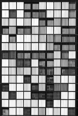 Brise soleil lining a commercial building in a black and white