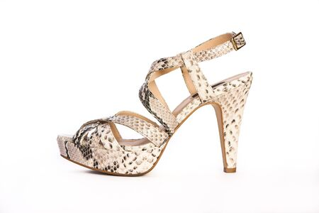 Snake leather high-heeled womens shoe on a white background.