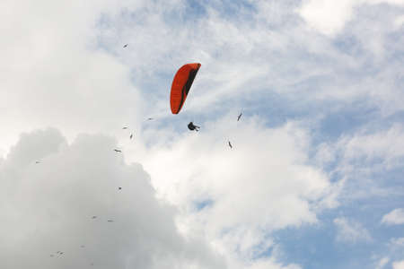 Flying a paraglider with birds on a cloudy day. Imagens