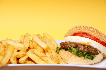 fastfood: burger with fries