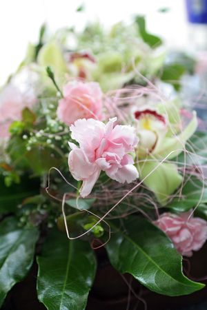 romantics: bouquet of pink carnation with leaves to gift Stock Photo