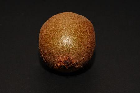 kiwi fruit autumn brown eat Stock Photo - 5581402